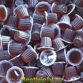 Beetle Jelly Case 16g Brown sugar