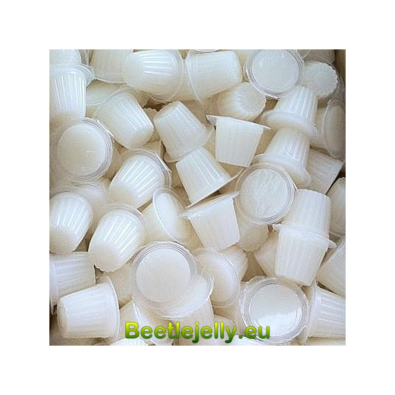 Beetle Jelly Case 16g Lactic acid