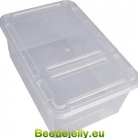 Braplast Rectangular box 1.3L - Clear base + clear foldable lid
