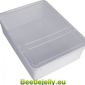 Braplast Rectangular box 3.0L - White base, clear foldable lid & airholes
