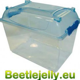 Bug and Beetle Habitat - Medium