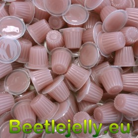 Beetle Jelly Case 16g Cricket food