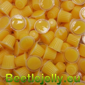 Beetle Jelly Case 16g Mango