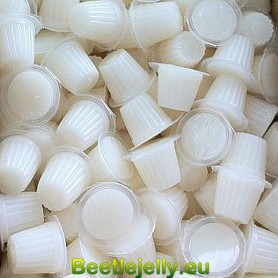 Beetle Jelly Case 16g...