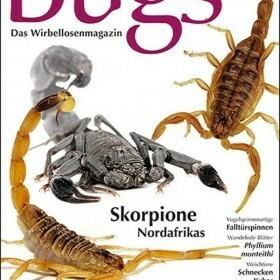 Bugs Magazine nr.5 - Skorpione Nordafrikas