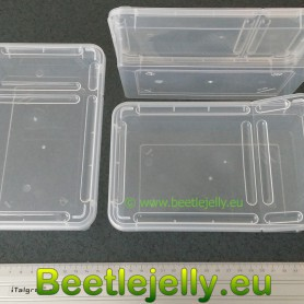 Braplast 800ml clear box