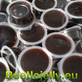 Beetle Jelly 70g Brown...