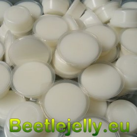 Beetle Jelly 70g Lactic...