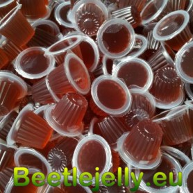 Beetle Jelly Case 16g Blueberry