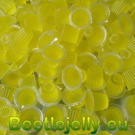 Beetle Jelly Case 16g Pineapple